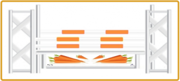 Mary King Cavaliers' Carrots Jump