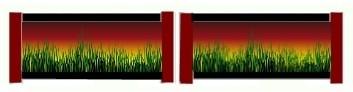 Sunset Grass Working Hunter Filler